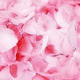 フラワーシャワー 造花 花びら ピンク 白 フェザーシャワー 約1000枚 羽付 オリジナル【天然フェザー付+ふんわりピンクMIX3色】
