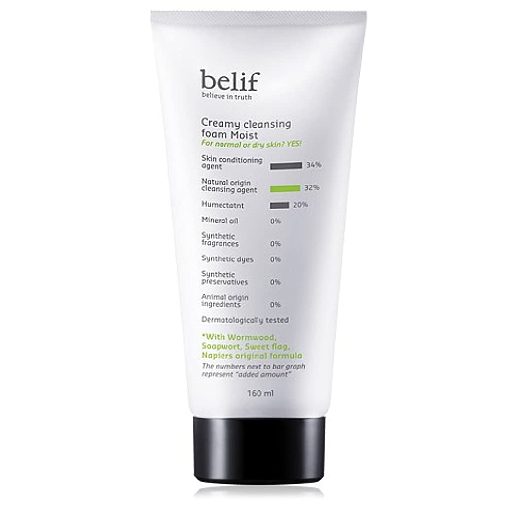 クリケット骨折軽くBelif(ビリーフ)Creamy cleansing foam moist 160ml[ビリーフクリーミークレンジングフォームモイスト]