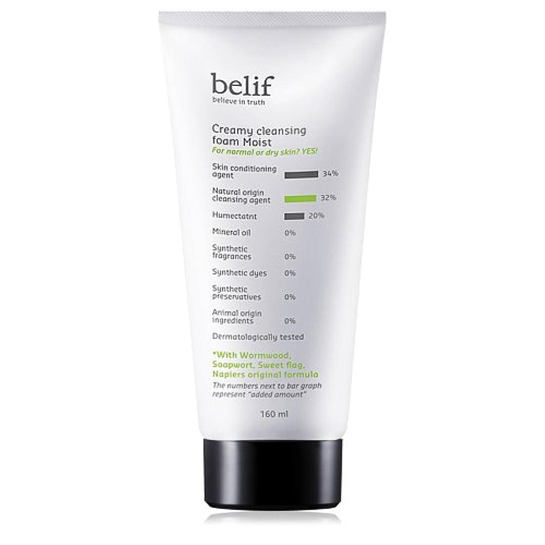 エンジニアリング皮肉な潜むBelif(ビリーフ)Creamy cleansing foam moist 160ml[ビリーフクリーミークレンジングフォームモイスト]