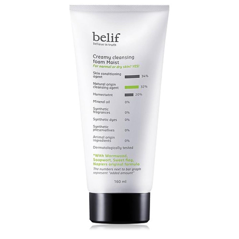 手術克服する航空機Belif(ビリーフ)Creamy cleansing foam moist 160ml[ビリーフクリーミークレンジングフォームモイスト]