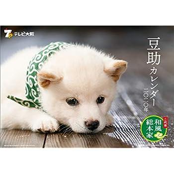 テレビ大阪 二代目 和風総本家 豆助 2020年 カレンダー 卓上 CL-403