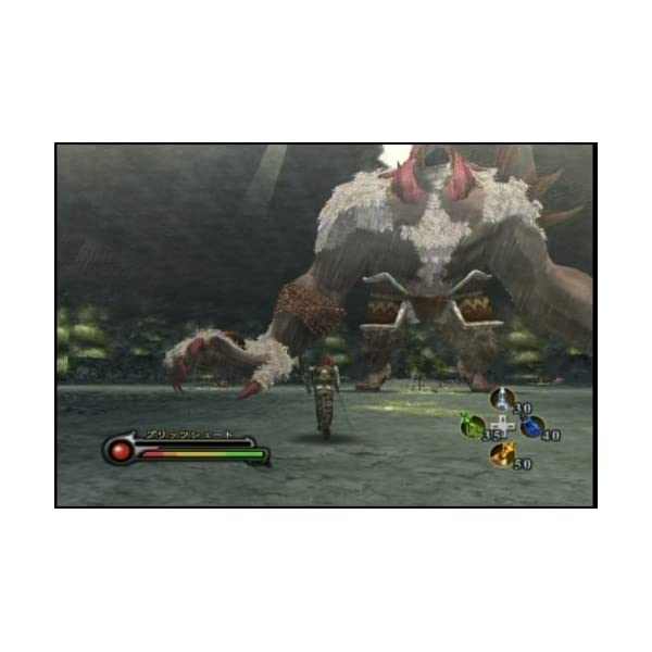 黄金の絆 - Wiiの紹介画像4