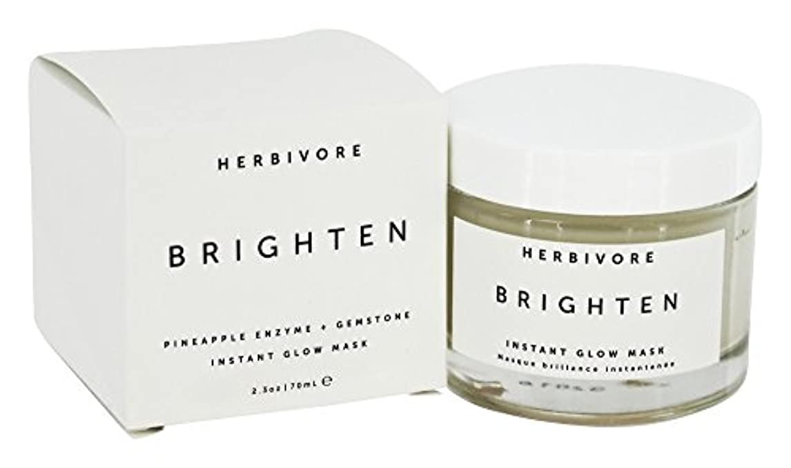保存拍車多数のHERBIVORE Brighten Pineapple + Gemstone Mask 68ml