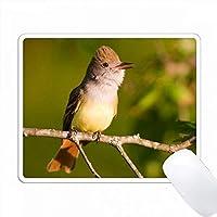 グレート・クレステッドFlycatcher、Myiarchusクリニタス、歌、Marion Co. IL PC Mouse Pad パソコン マウスパッド