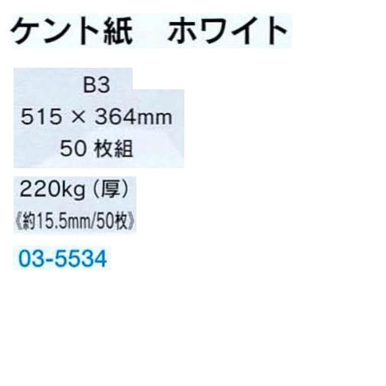 識別残り紫のケント紙 B3判 220kg 50枚組 B03-5534