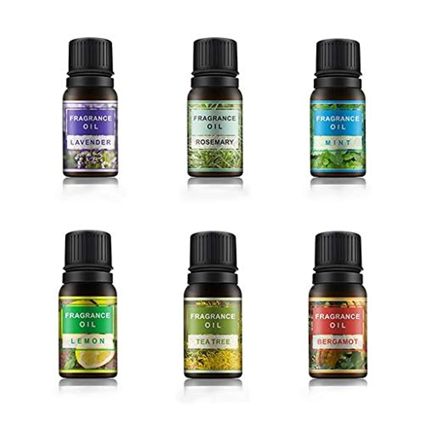 かび臭いマウント補償Lioncorek エッセンシャルオイル オイル アロマオイル 精油 水溶性 ナチュラル フレグランス 100%純粋 有機植物 加湿器用 6種の香りセット