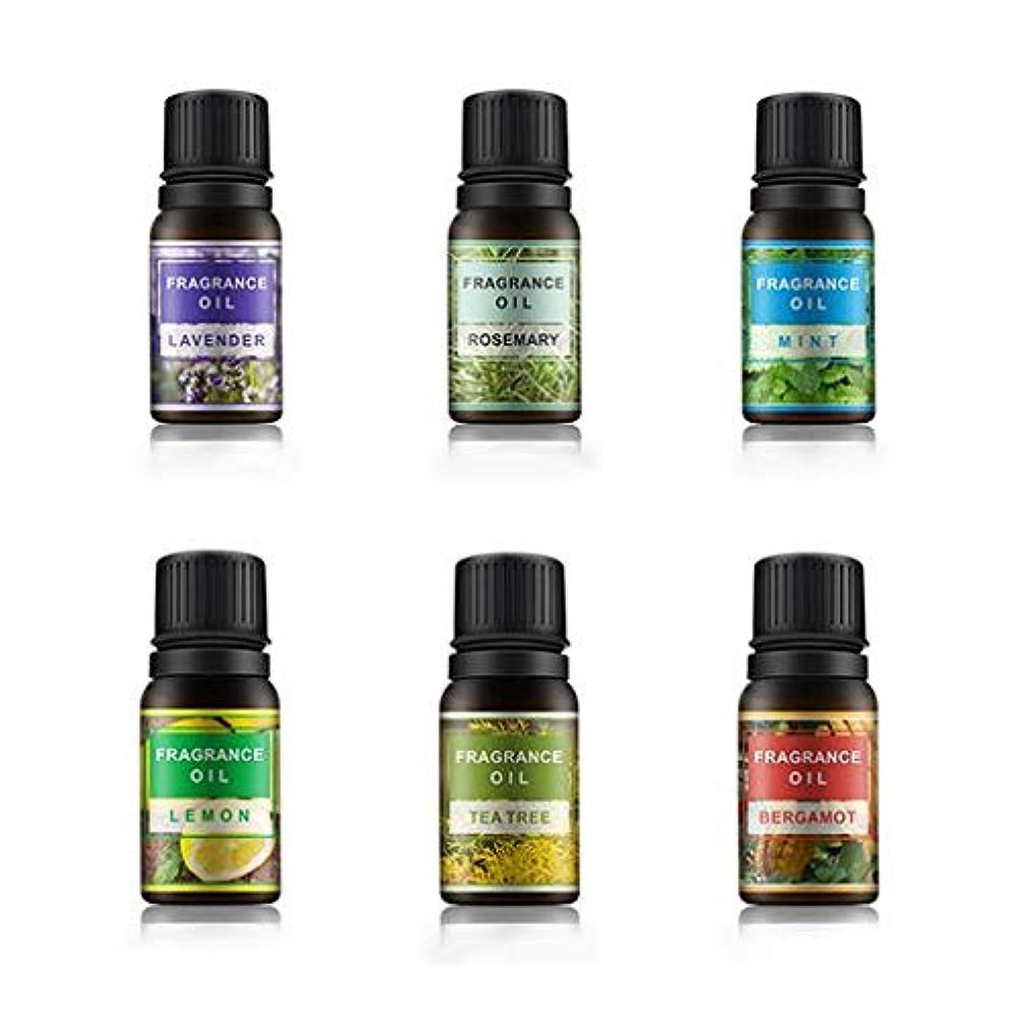 サイズ寸前アクセスできないLioncorek エッセンシャルオイル オイル アロマオイル 精油 水溶性 ナチュラル フレグランス 100%純粋 有機植物 加湿器用 6種の香りセット