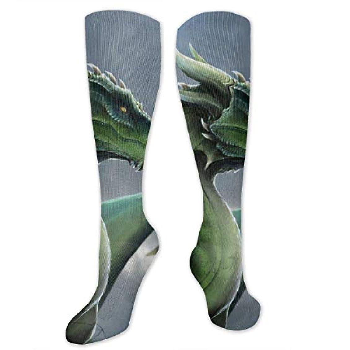 振動するレポートを書くピッチャーqririyユニセックスカラフルドレスソックス、グリーンドラゴン、冬ソフトコージー暖かい靴下かわいい面白いクルーコットンソックス1パック