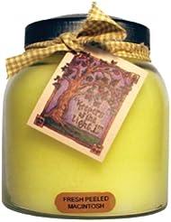 A Cheerful Giver Fresh Peeled Macintosh Baby Jar Candle 34oz JP57