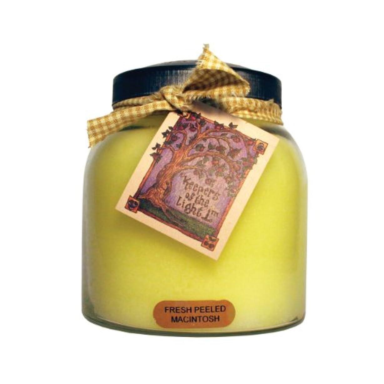 前にコロニー仲介者A Cheerful Giver Fresh Peeled Macintosh Baby Jar Candle 34oz JP57