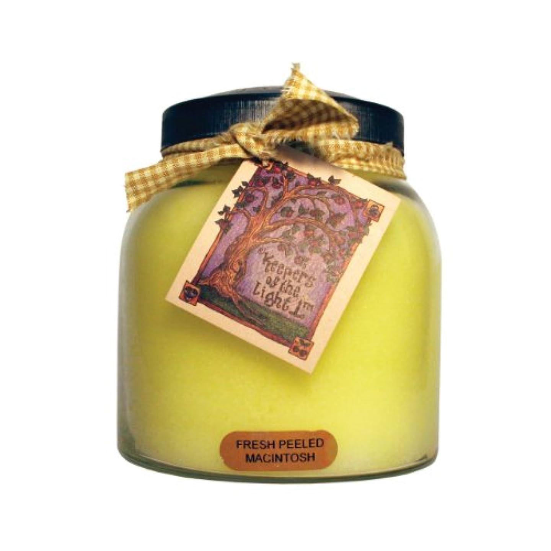 滅びるなめらかなリスナーA Cheerful Giver Fresh Peeled Macintosh Baby Jar Candle 34oz JP57
