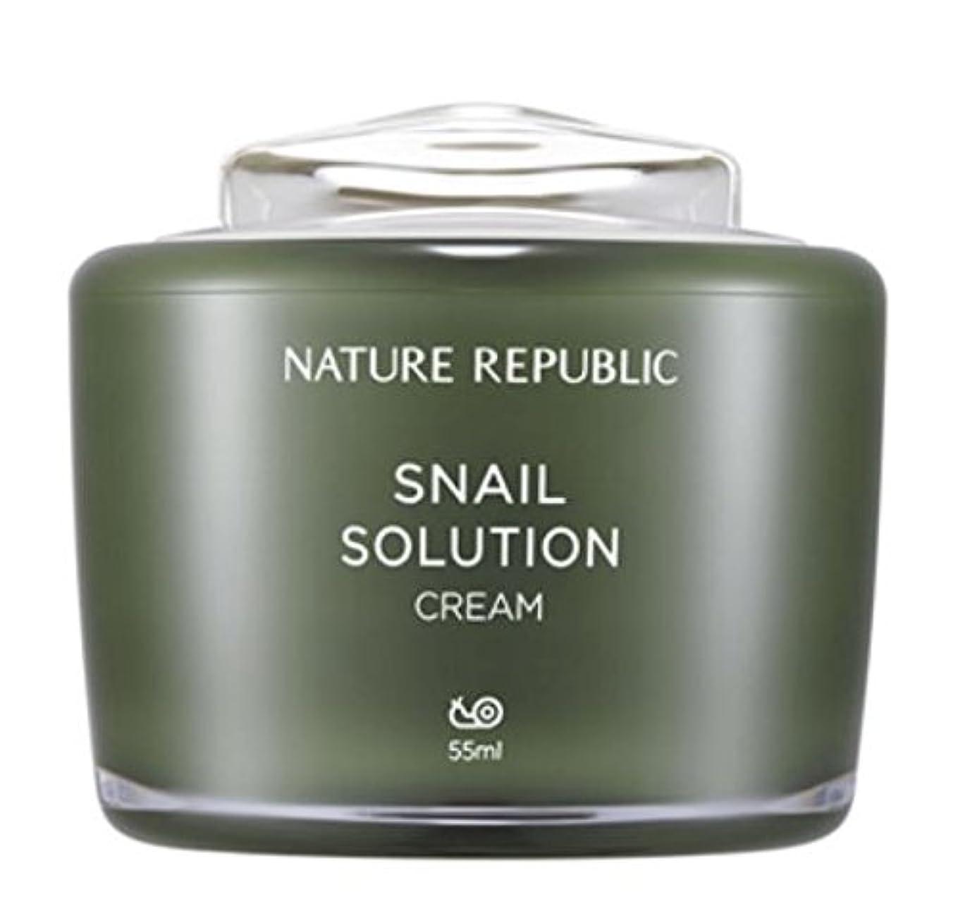 フレームワーク国際乱気流正規輸入品 NATURE REPUBLIC(ネイチャーリパブリック) S SOL クリーム b 55ml NK0637