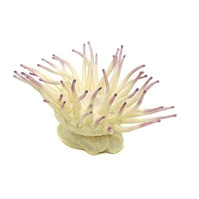 (ペンプラックス) Penn-Plax 熱帯魚・観賞魚用 イソギンチャク 水槽オーナメント 置物 アクアリウム (ラージ) (クリーム)