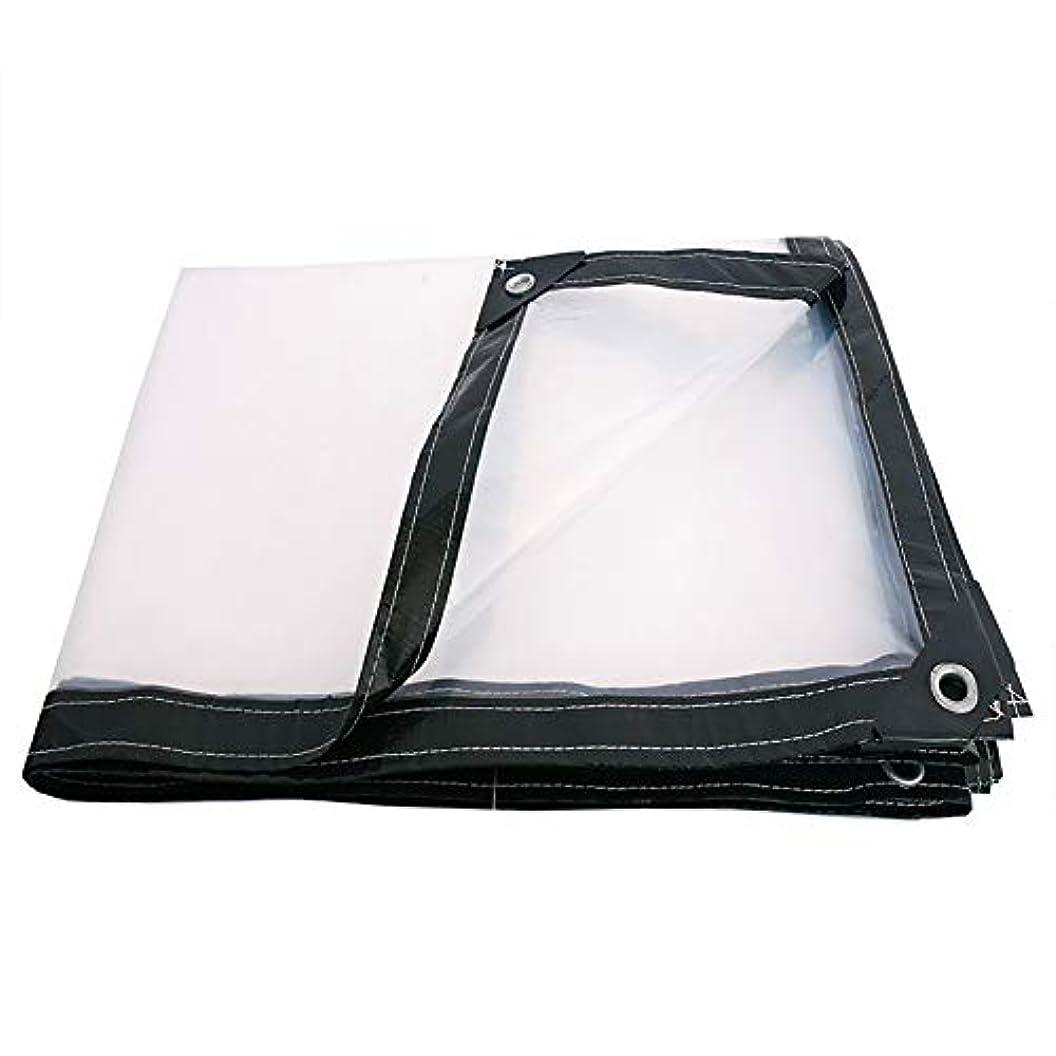 学習コンクリート近似タープ 透明な防水布防雨プラスチック小屋布、キャノピーテントのための防水シート、温室、ボートとプールカバー、100G /M² (サイズ さいず : 4x5M)