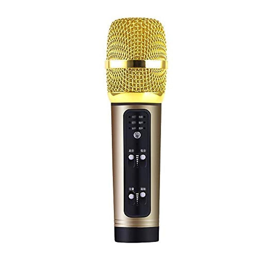 優越フルーツ野菜安らぎK歌携帯電話コンデンサーサウンドカードマイクアンカーライブ歌う歌う声マイク (色 : ゴールド)