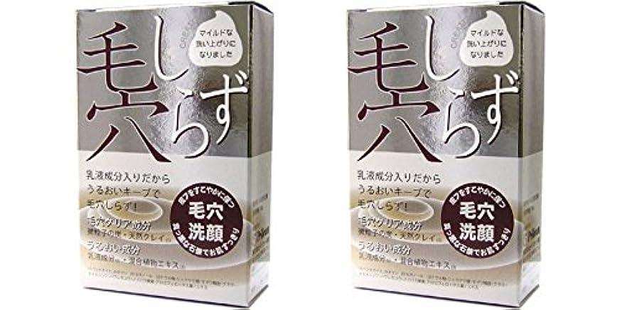 ペリカン石鹸 毛穴しらず 洗顔石鹸 100g (2個セット)