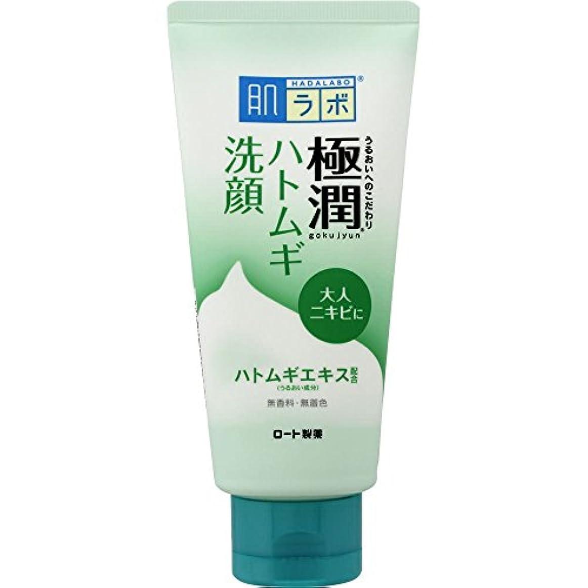 明確に散逸味わう肌ラボ 極潤 毛穴洗浄 大人ニキビ予防 ハトムギ洗顔フォーム 100g