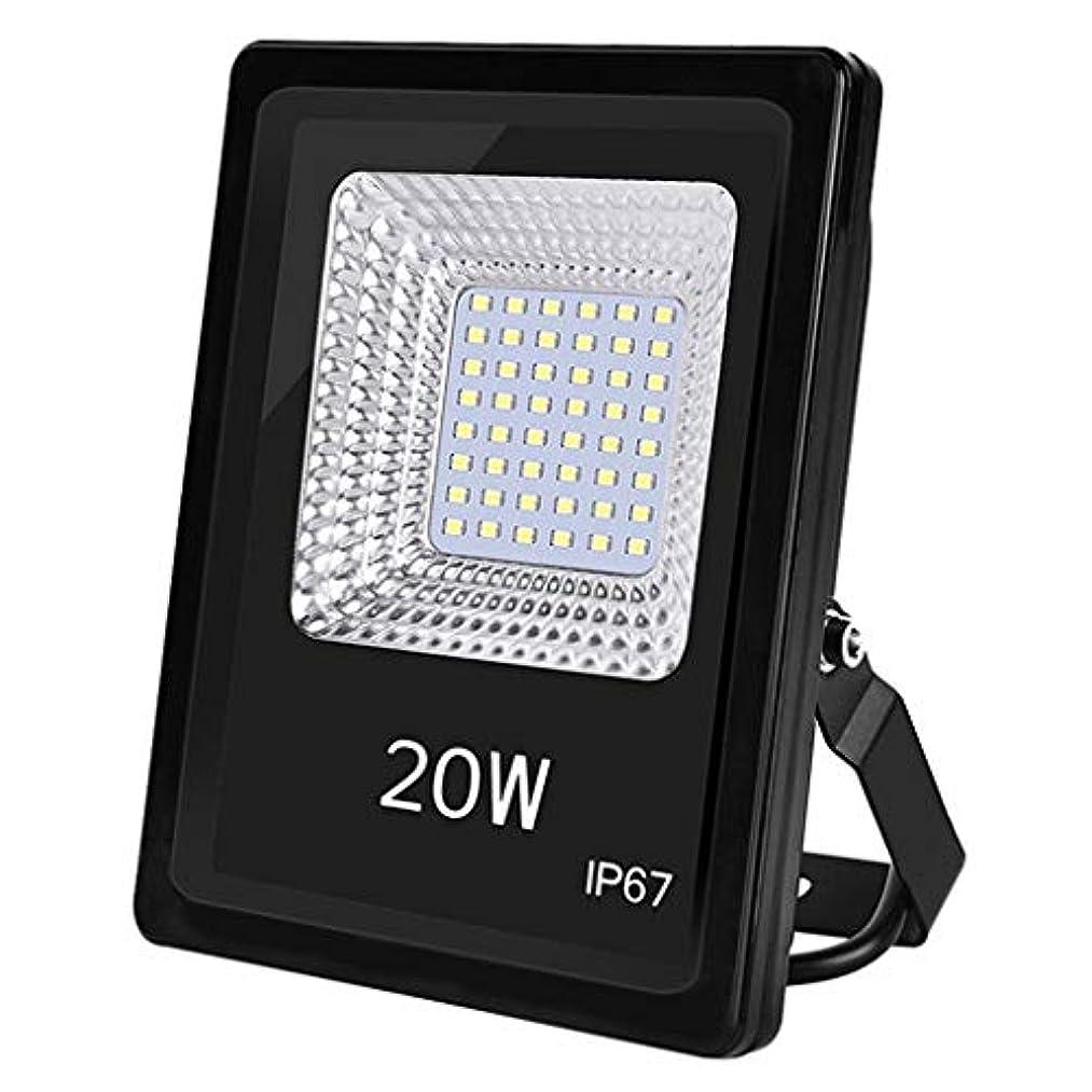 フラスコ取得する不公平LED屋外防水投影ランプ、安全投光器パティオ倉庫工場ビル工場ビルボード20Wスポットライト (Color : 6500K)