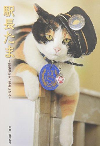駅長たま 〜三毛猫たま、電車になる〜 (たまの駅長だより)