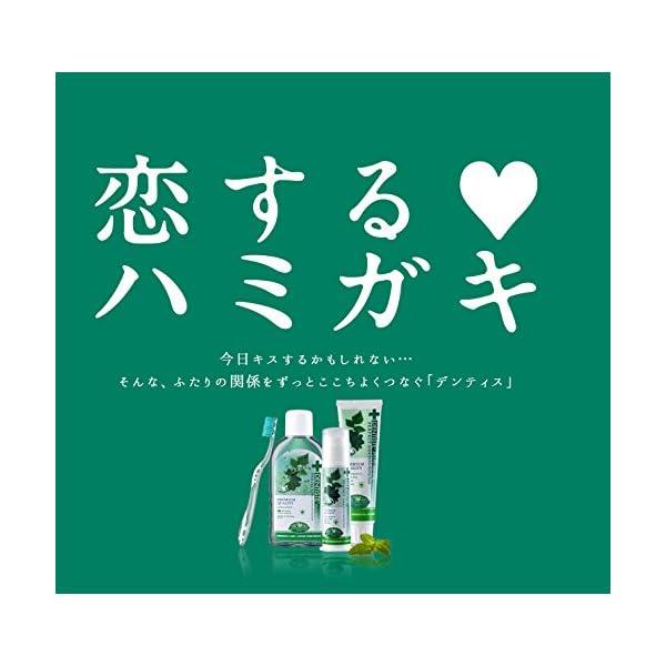 デンティス エチケット ハミガキ粉 100gの紹介画像3