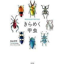 きらめく甲虫 (幻冬舎単行本)