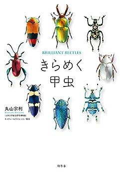 [丸山宗利, ネイチャー&サイエンス/構成]のきらめく甲虫 (幻冬舎単行本)