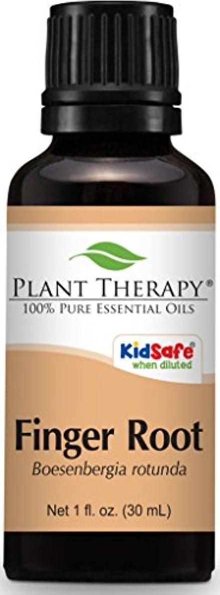 誠意練る航海のPlant Therapy Finger Root Essential Oil. 30 ml (1 oz) Use for Aromatherapy, Personal Care, and Diffuser. …