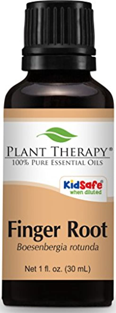 行くクランシー時代遅れPlant Therapy Finger Root Essential Oil. 30 ml (1 oz) Use for Aromatherapy, Personal Care, and Diffuser. …