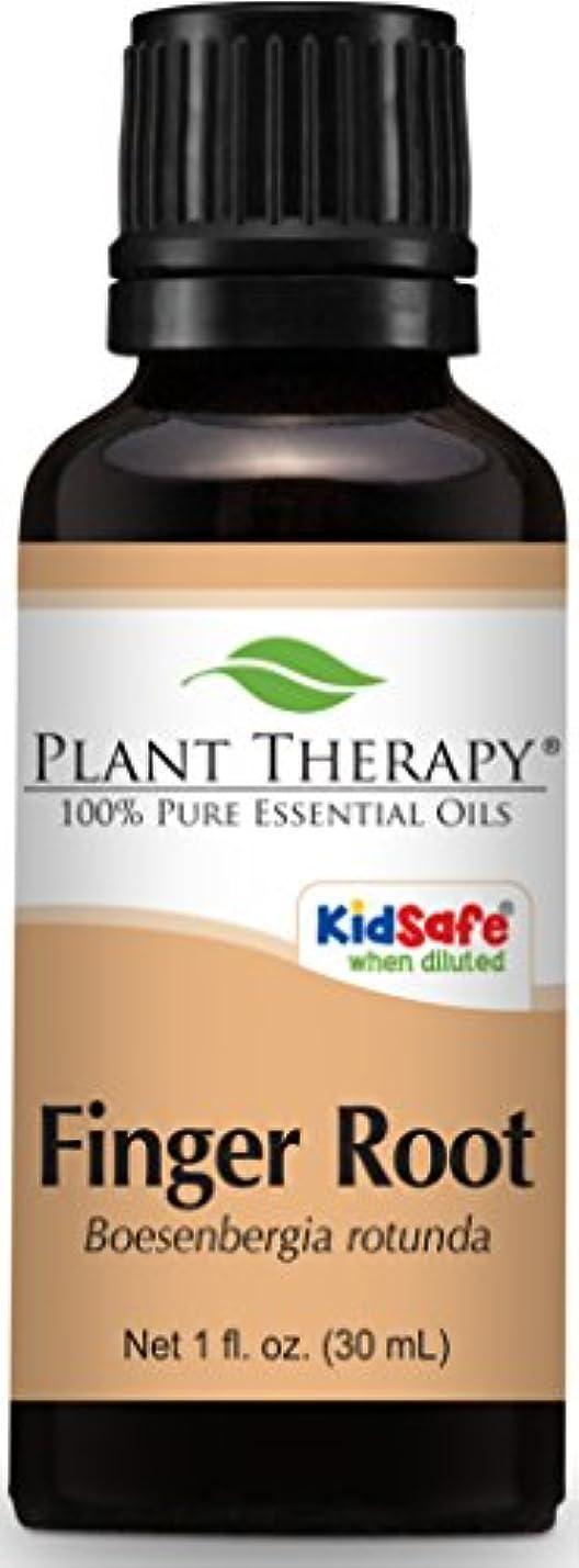 アクションマイナスストライドPlant Therapy Finger Root Essential Oil. 30 ml (1 oz) Use for Aromatherapy, Personal Care, and Diffuser. …