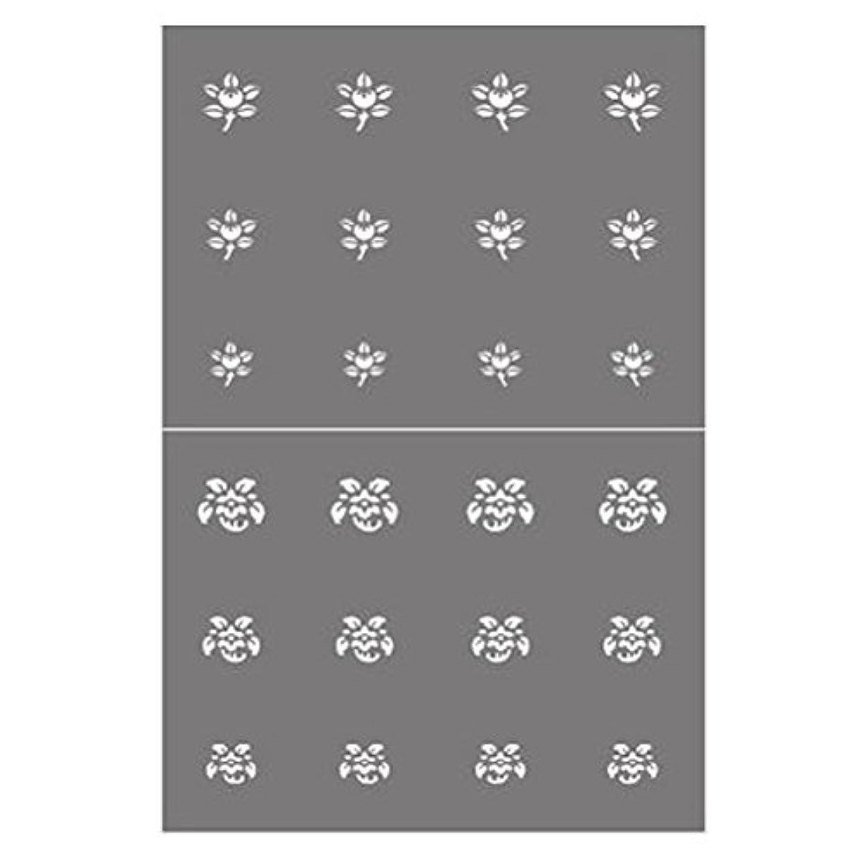 動力学過敏なスキーステンシル NSK-66