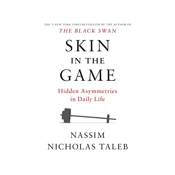 Skin in the Game: Hidden...の商品画像