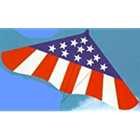 Kites for Kids-The Spirit Of America USA Gayla 42 Flying Delta Kite for Boys and Girls by Gayla Industries [並行輸入品]
