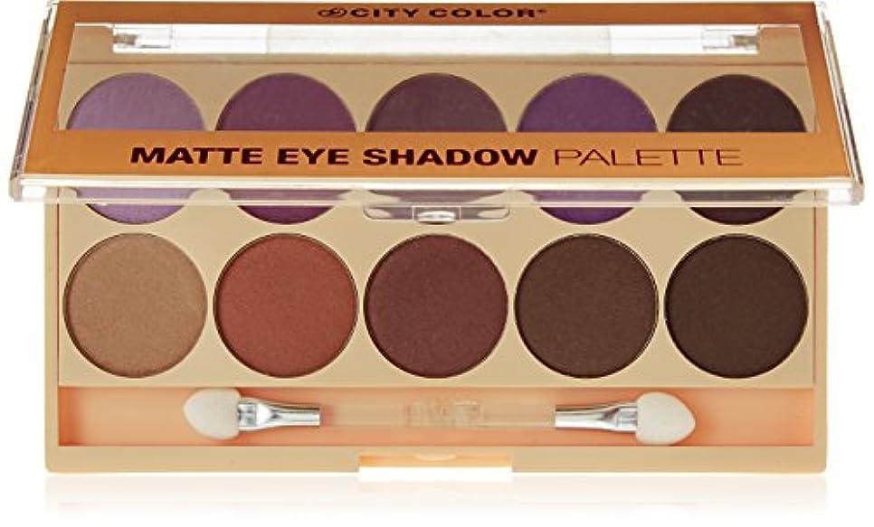 玉アルミニウム楽しませるCITY COLOR Matte Eye Shadow Palette (並行輸入品)