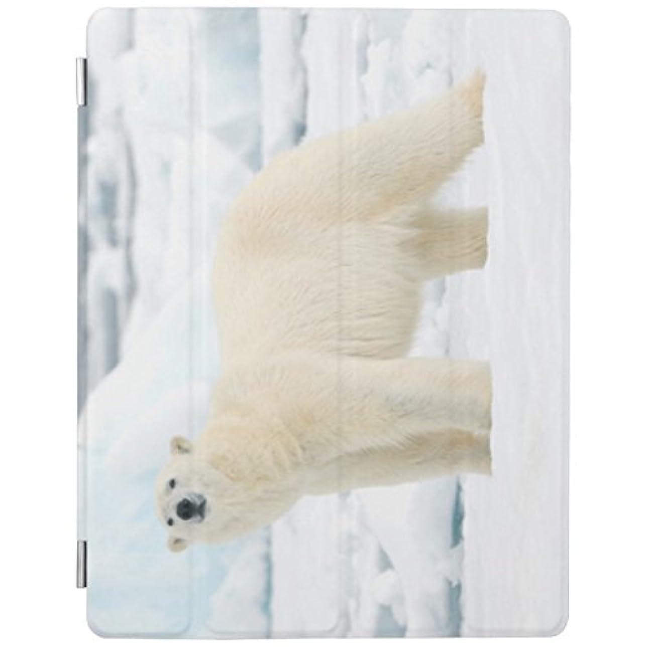 前者遺棄された酸度Recaso(レカソ)食糧を求める大人の白くま iPad Air2 ケース 軽量 薄型 オートスリープ スタンド機能 半透明ー PUレザー 傷つけ防止 三つ折タイプ iPad Air3専用