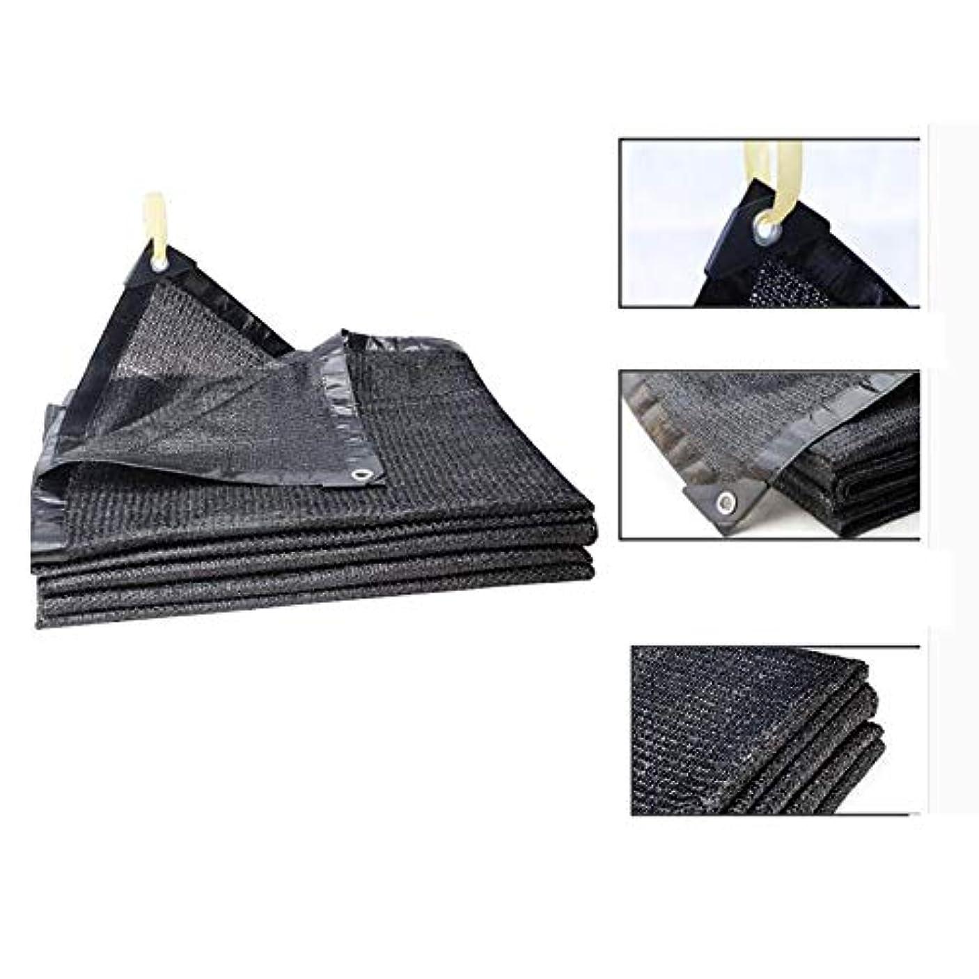 性格汚染された差別するDGLIYJ 園芸植物の屋根の塵保護網のための多機能の黒い陰の網6ピン暗号化の端の絶縁材の網 (Color : Black, Size : 3x5m)