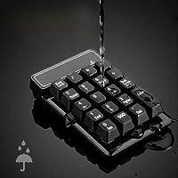 FidgetGear ラップトップのデスクトップPCのためのUSBの数字キーパッドの小型番号パッドのテンキー19のキーのキーボード USBワイヤレスキーパッド