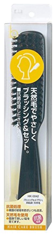 液化するうなずく一元化する貝印 Beセレクション ブラッシングセットブラシ L 黒檀 HK0042