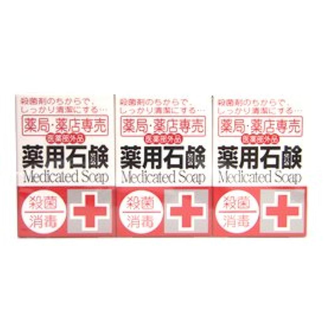 レイアウト量で頭痛薬局?薬店専売 薬用石鹸 メディカルソープ 100g×3個入