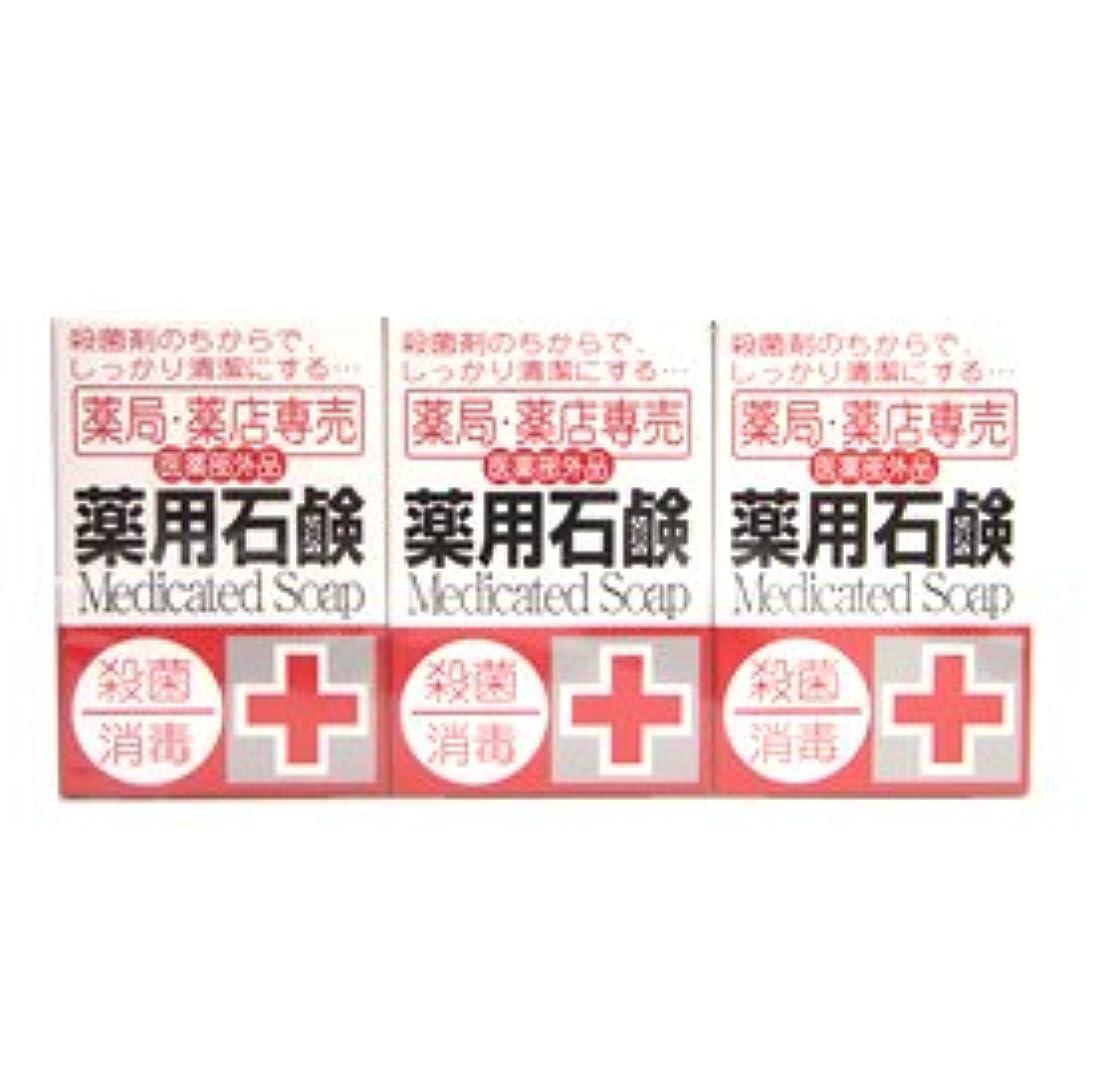 頻繁にヨーロッパ必要ない薬局?薬店専売 薬用石鹸 メディカルソープ 100g×3個入