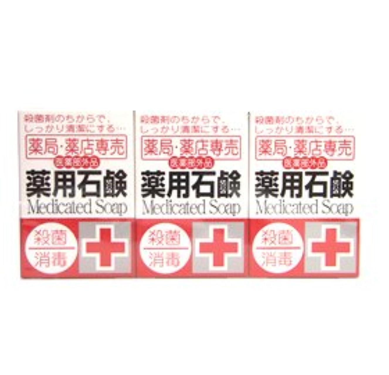 薬局?薬店専売 薬用石鹸 メディカルソープ 100g×3個入