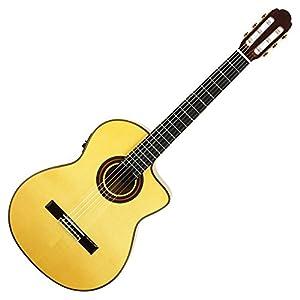 ARIA アリア フラメンコギター A-120F-CWE エレクトリックモデル