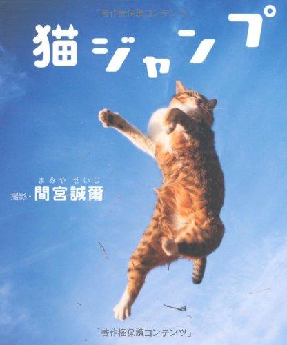 猫ジャンプの詳細を見る