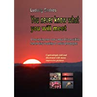 You never know what you will meet (English Edition)