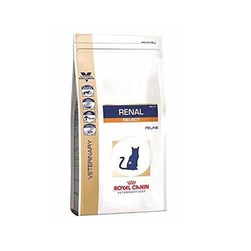 特別療法食 ロイヤルカナン 猫用 腎臓サポート セレクション ドライ 2KG