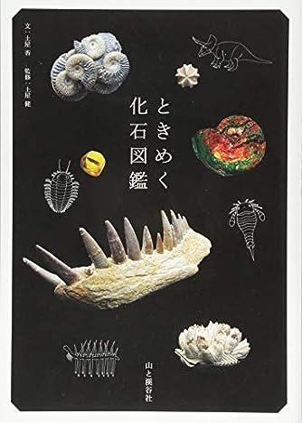 ときめく化石図鑑 (Book for Discovery)