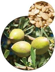 有機アルガンオイル バージン 未精製 250ml 生活の木