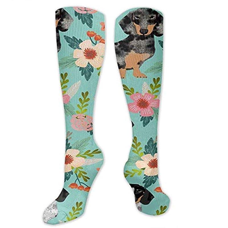 故意のホテル紳士気取りの、きざな靴下,ストッキング,野生のジョーカー,実際,秋の本質,冬必須,サマーウェア&RBXAA Doxie Dachshunds Florals Cute Dog Socks Women's Winter Cotton Long...