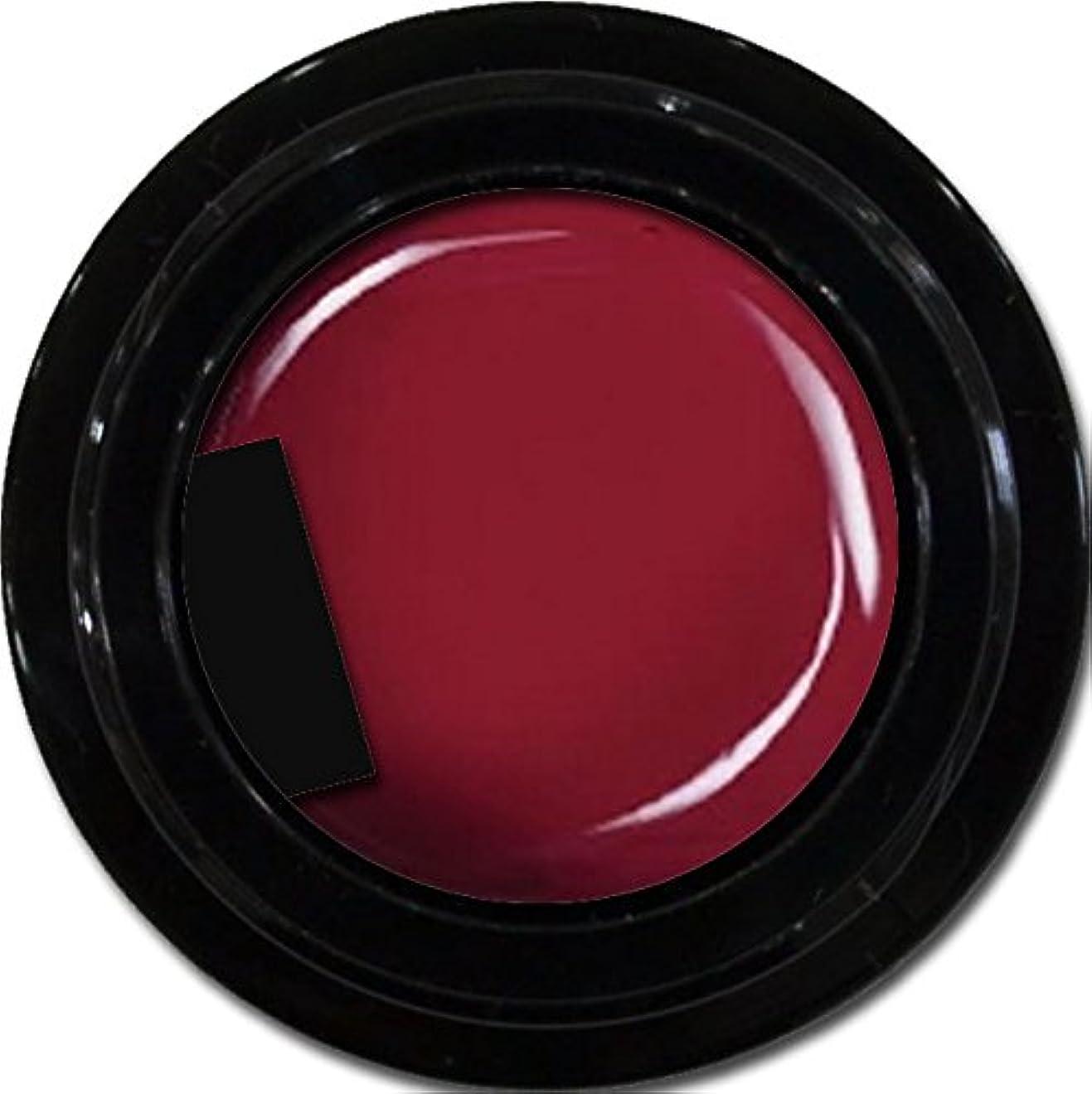起きろコーン剛性カラージェル enchant color gel M408 PlumJerry 3g/ マットカラージェル M408プラムジェリー 3グラム