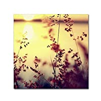 At The End of The Day work by Beata Czyzowska Young 35 by 35-Inch Canvas Wall Art [並行輸入品]