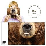 Animal Mask Book Cover アニマルマスクブックカバー [ Bear ]VRT42109